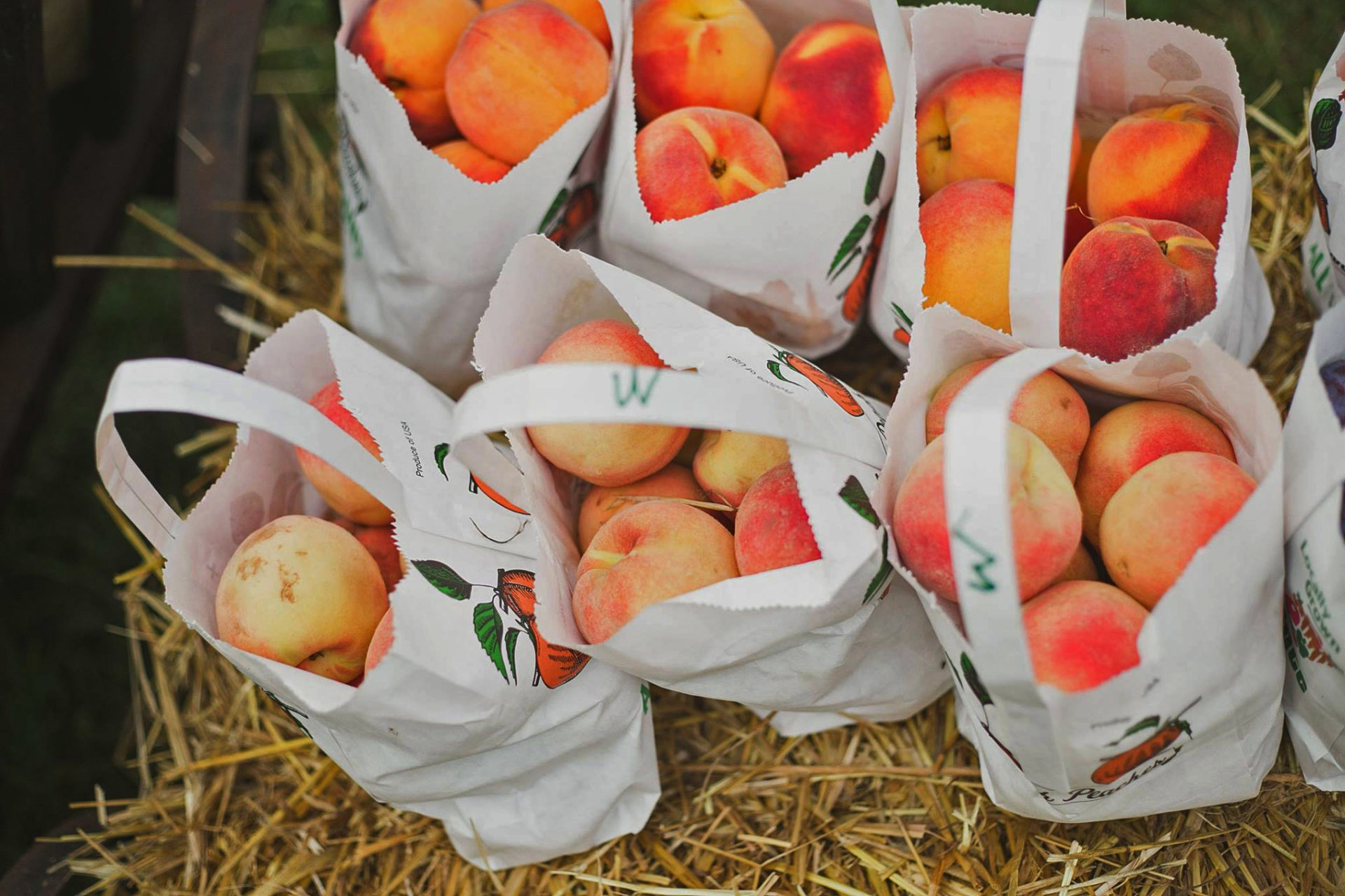 The Virginia State Peach Festival and 60+ other ways to get your farm on
